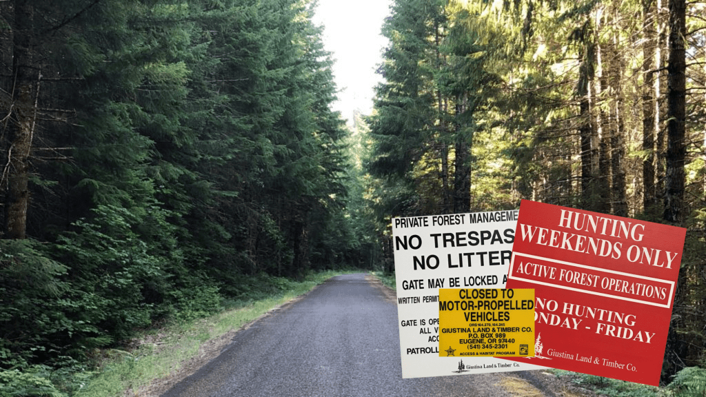 No Trespassing Signs in Forest